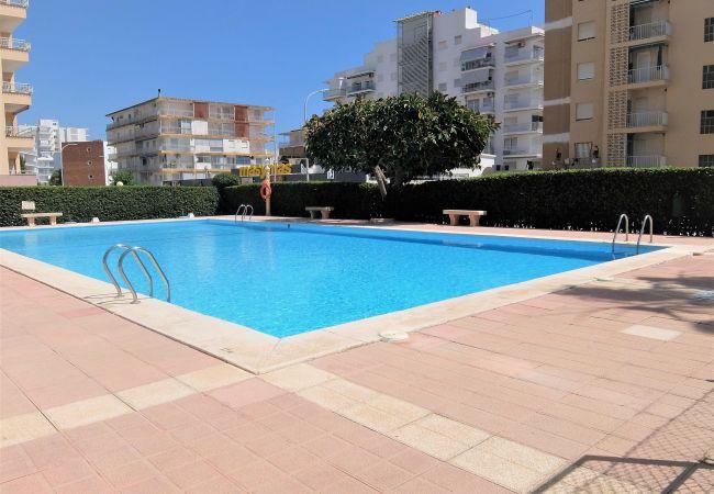 Apartamento en Grao de Gandia - CANTABRIA 10º - 103ª (ALQUILER SOLO A FAMILIAS) SI