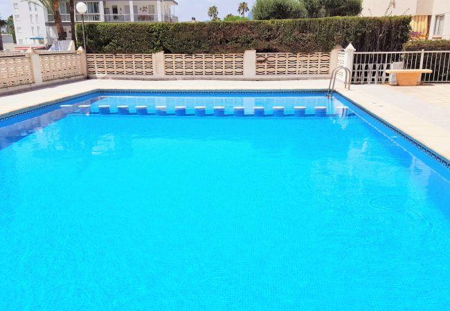 Apartamento en Grao de Gandia - BALI  Nº 3 - 8º - 15ª (ALQUILER SOLO A FAMILIAS) Z
