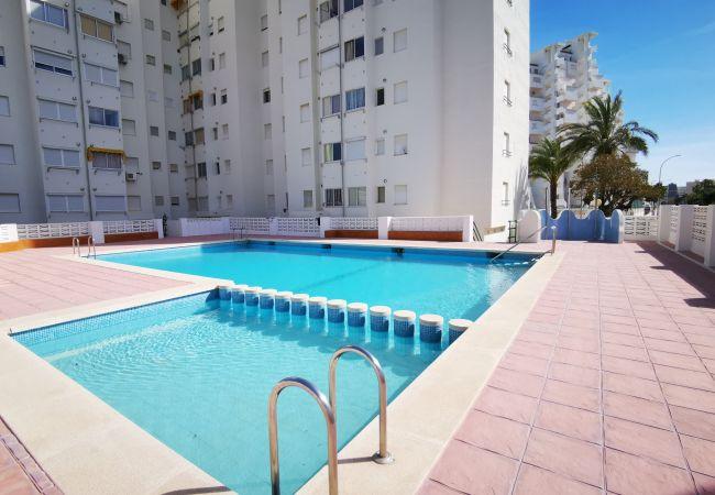 Apartamento en Grao de Gandia - CANCUN IV - 9º C (ALQUILER SOLO A FAMILIAS) 400 ME