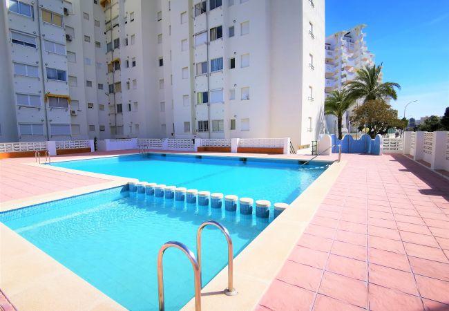 Apartamento en Grao de Gandia - CANCUN IV - 9º F (ALQUILER SOLO A FAMILIAS) 400 ME