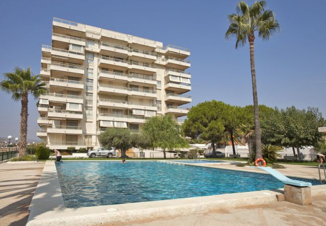 Apartamento en Peñiscola - 193 - MEDIT.B ATICO 1ª