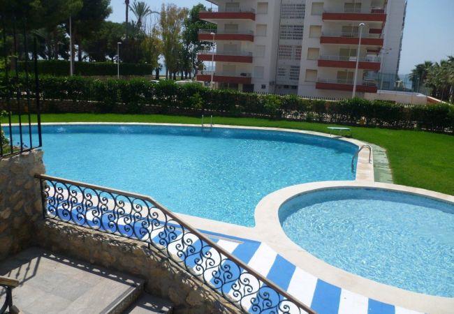 Apartamento en Cullera - LAS VEGAS, ESC-3, 7º-19