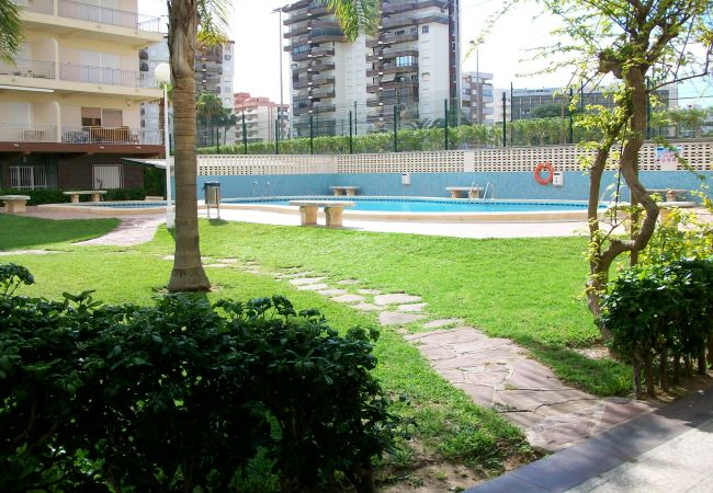 Apartamento en Grao de Gandia - BARLOVENTO - ESC.1 - 4º - 7ª (ALQUILER SOLO A FAMI