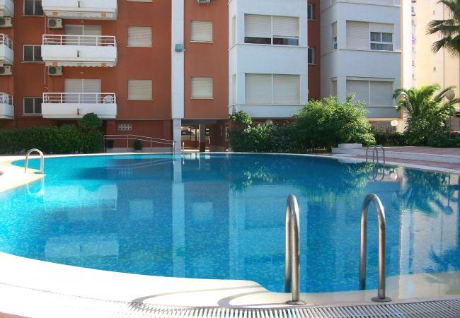 Apartamento en Grao de Gandia - LAS ALONDRAS B-1ª - 1º - 1ª (ALQUILER SOLO A FAMIL