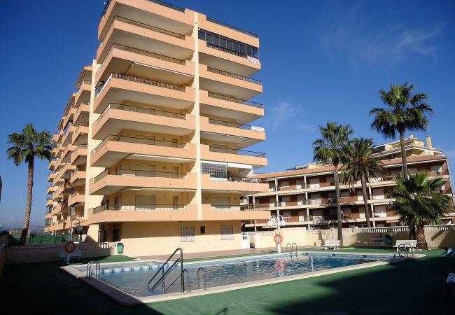 Apartamento en Peñiscola - Apartamentos Alboran 4/6 LEK