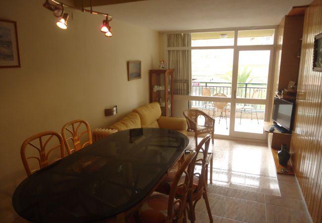 Apartamento en Peñiscola - R. Peñiscola Playa 208 LEK