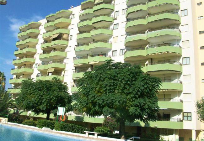 Apartamento en Grao de Gandia - GARDENIAS III - 8º D ( ALQUILER SOLO A FAMILIAS )