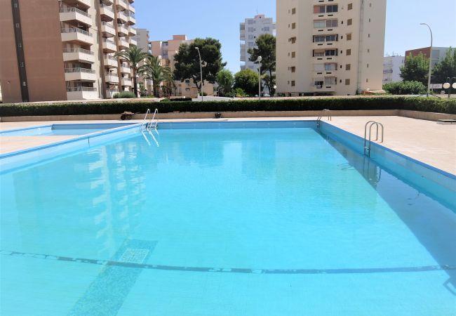 Apartamento en Grao de Gandia - CANCUN I - 4ª - 4º - DCHA (ALQUILER SOLO A FAMILIA