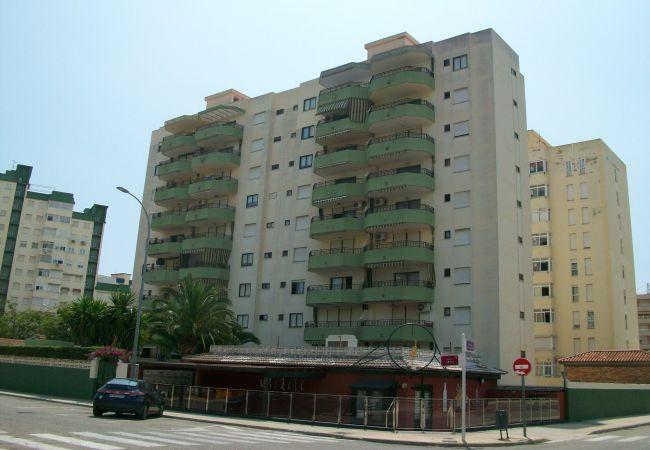 Apartment in Grao de Gandia - GARDENIAS III - 6º - A (ALQUILER SOLO A FAMILIAS)