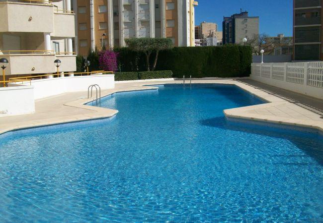 Apartment in Grao de Gandia - CIVITAS 2000 - 5º - 10ª (ALQUILER SOLO A FAMILIAS)