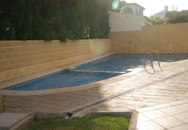 Apartment in Alcoceber / Alcossebre - SOL Y MAR - 4/6 estandar