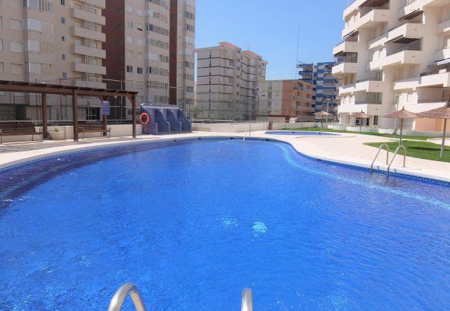 Apartment in Grao de Gandia - ALTAMAR DUPLEX - 1º (ALQUILER SOLO A FAMILIAS)1ª L